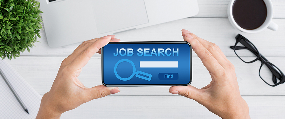 Someone holding a phone with the words Job Search on it